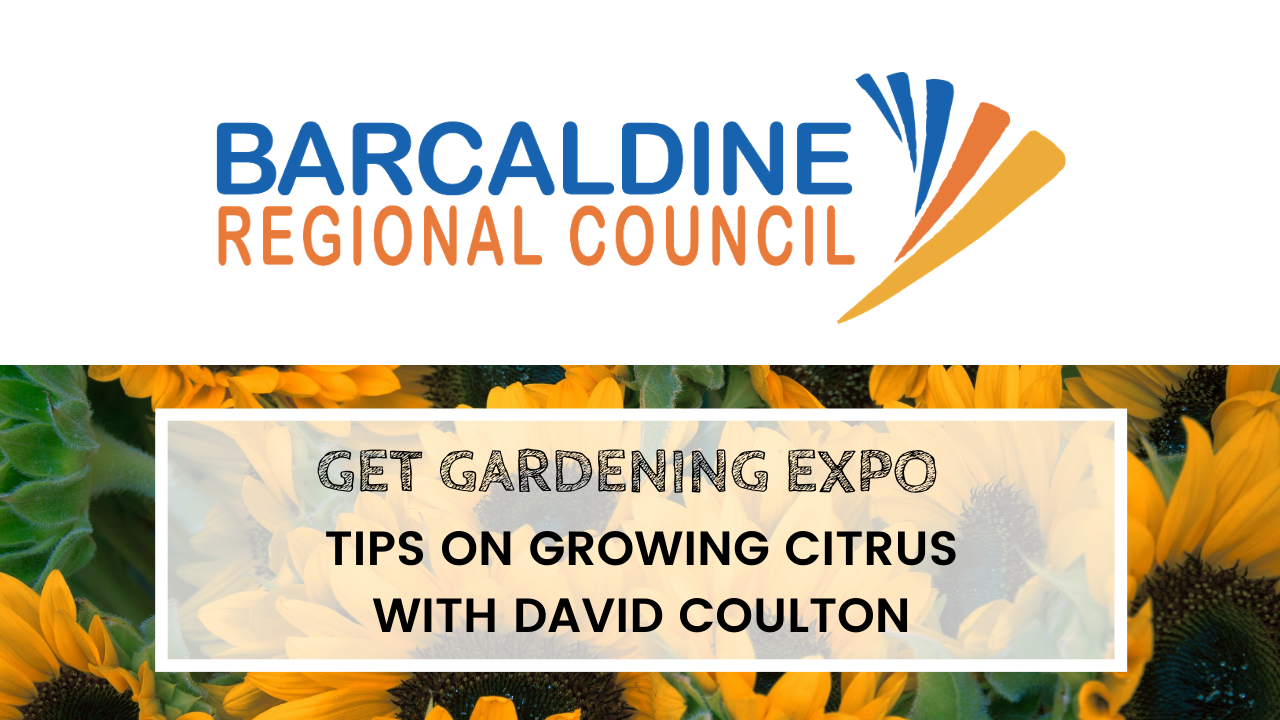 2020 Get Gardening Expo - David Coulton - Tips for growing citrus