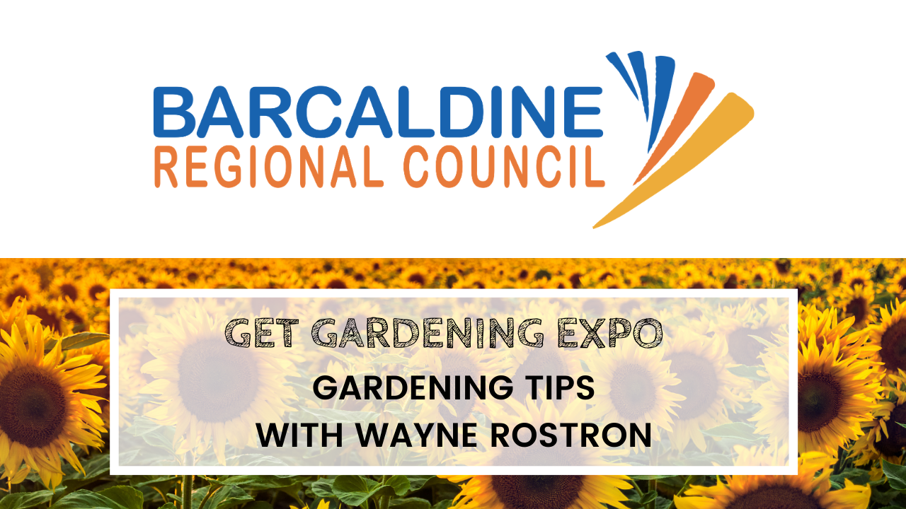 Get Gardening Expo - Gardening tips with Wayne Rostron